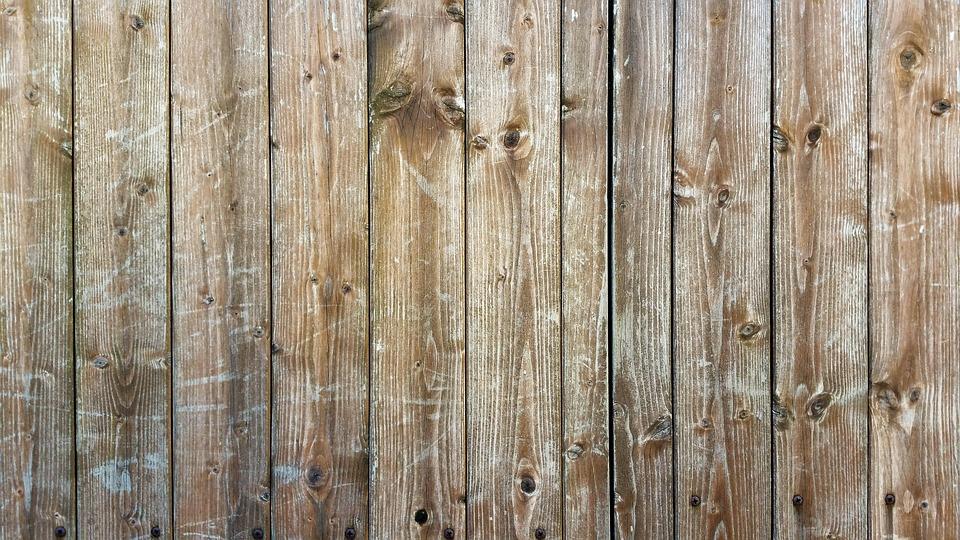 Closeup af træ